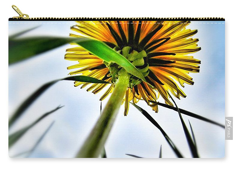 What's Up Carry-all Pouch featuring the photograph What's Up? by Marianna Mills