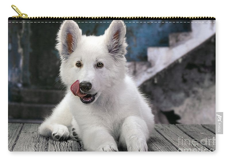 White Swiss Shepherd Dog Carry All Pouch
