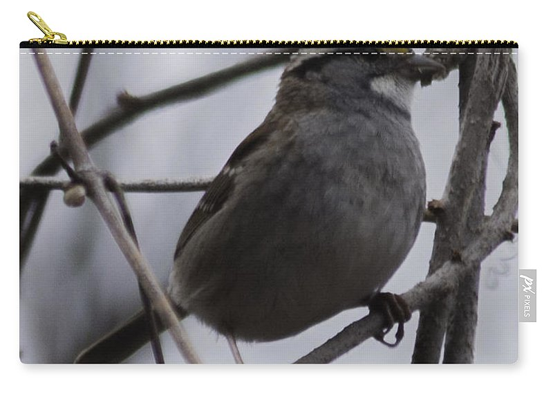 White-throated Sparrow Carry-all Pouch featuring the photograph White-throated Sparrow by Ronald Grogan