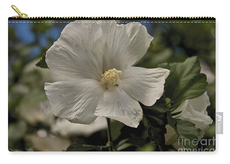 Tree Carry-all Pouch featuring the photograph White by William Norton