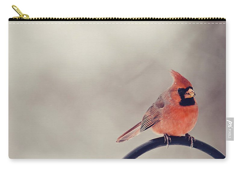 Cardinal Carry-all Pouch featuring the photograph Winter Cardinal by Heather Applegate