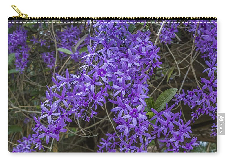 Florida Carry-all Pouch featuring the photograph Wisteria by Jane Luxton