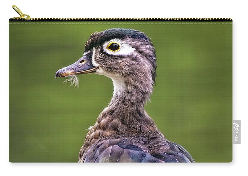 Animal Carry-all Pouch featuring the photograph Wood Duck Juvenile by Marcia Colelli