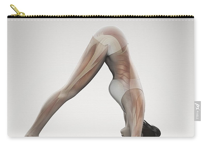 Bending Over Carry-all Pouch featuring the photograph Yoga Dolphin Pose by Science Picture Co