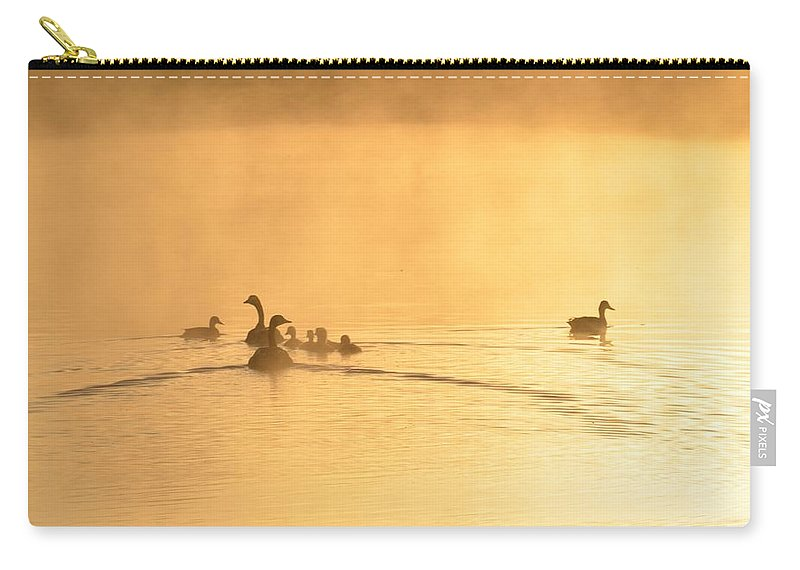 You Better Get Your Ducks In A Row Carry-all Pouch featuring the photograph You Better Get Your Ducks In A Row by Bill Cannon