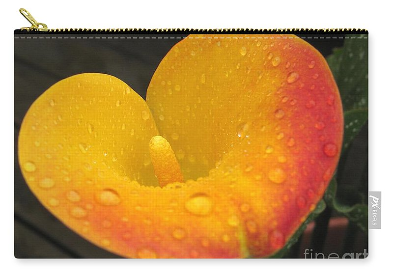 Zantedeschia Carry-all Pouch featuring the photograph Zantedeschia Named Flame by J McCombie