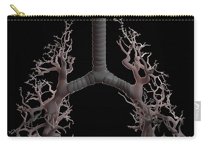 Digitally Generated Image Carry-all Pouch featuring the photograph Bronchial Branches by Science Picture Co