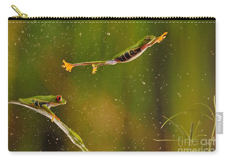 Animal Carry-all Pouch featuring the photograph Red-eyed Tree Frog by Scott Linstead