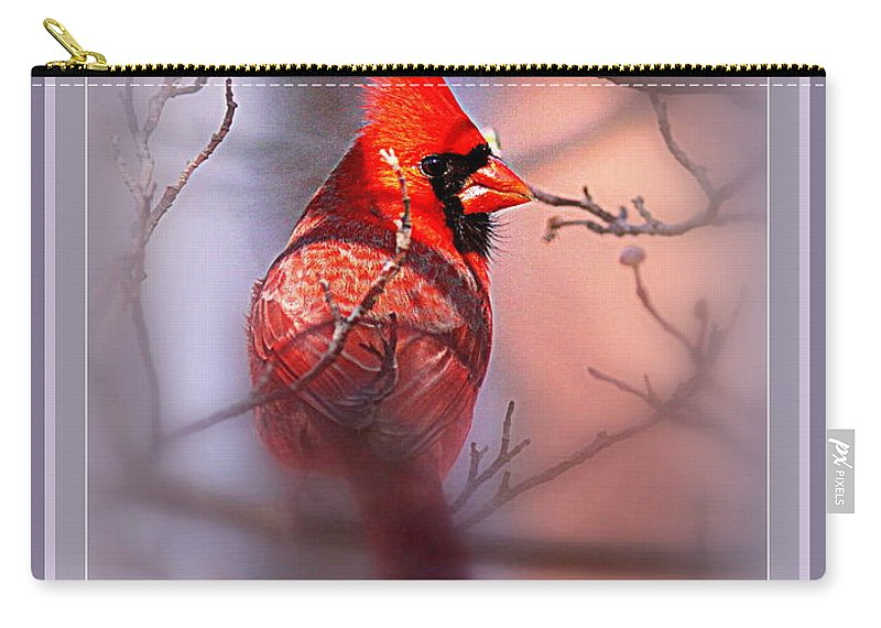 105865-006 Carry-all Pouch featuring the photograph 105865-006 - Cardinal-fb by Travis Truelove