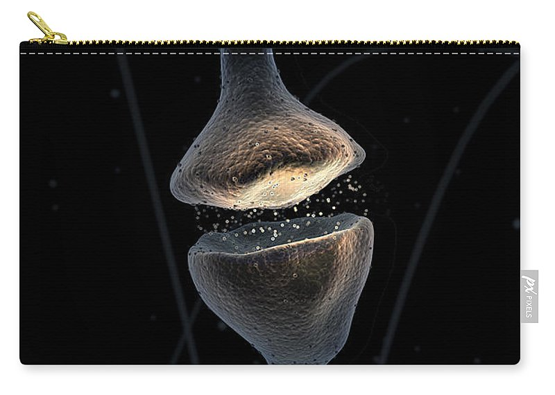 Synapses Carry-all Pouch featuring the photograph Synapse by Science Picture Co