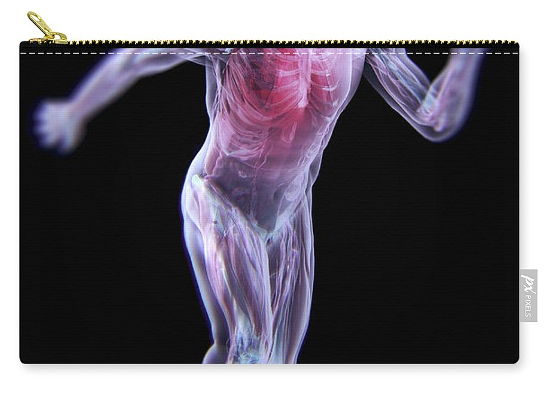 Transparent Skin Carry-all Pouch featuring the photograph Running Male Figure by Science Picture Co