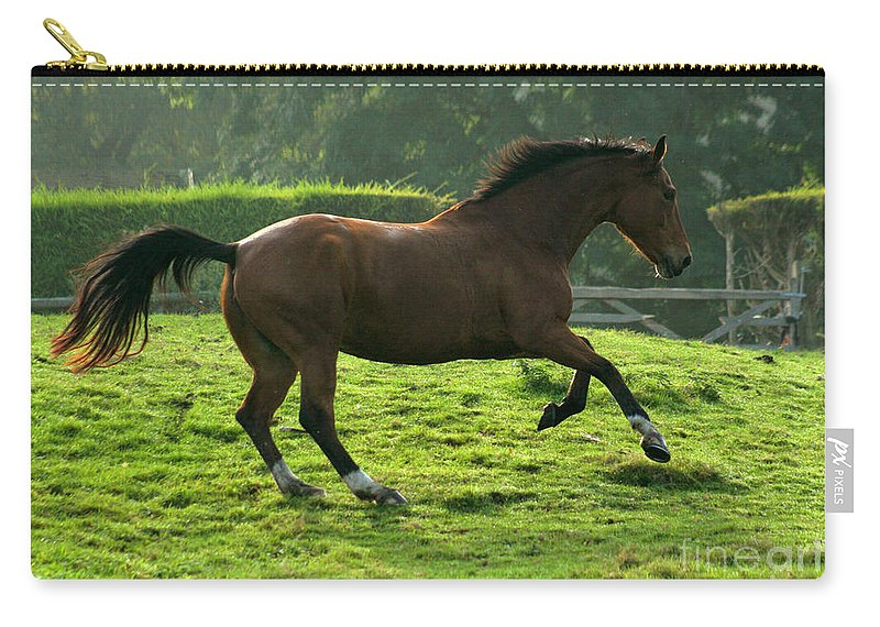 Grey Horse Carry-all Pouch featuring the photograph The Bay Horse by Angel Ciesniarska