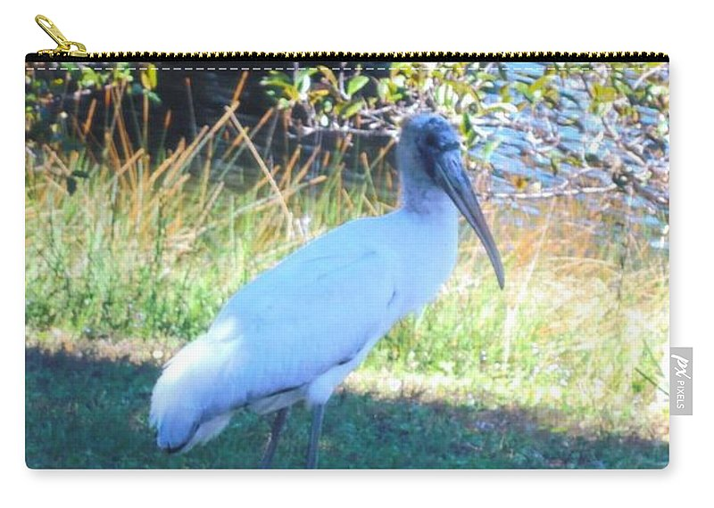 Lakes Park In Ft.myers Carry-all Pouch featuring the photograph Wood Stork by Robert Floyd
