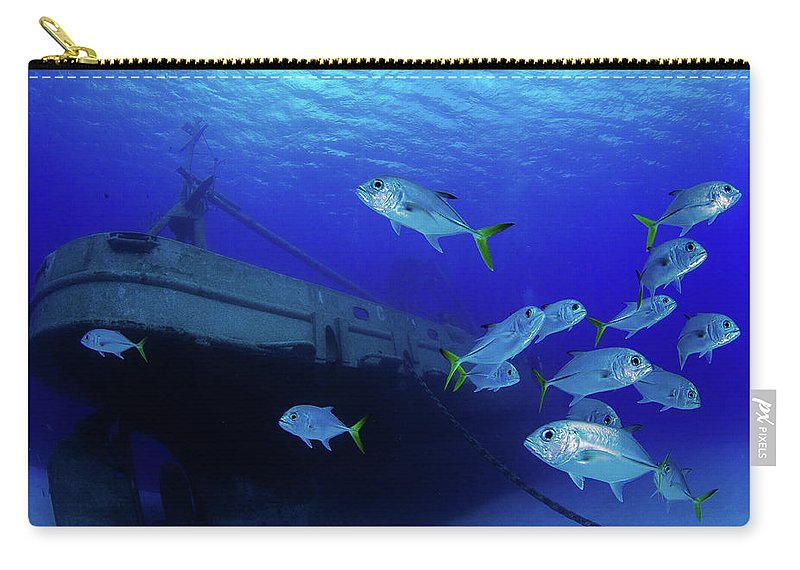 Kittiwake Carry-all Pouch featuring the photograph 1207kittiwake011-7.jpg by Tom Meyer