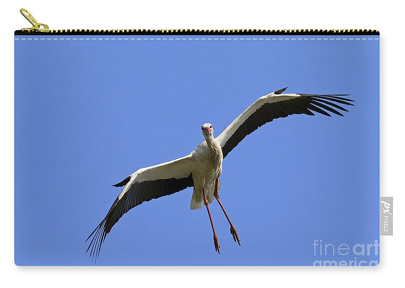 White Stork Carry-all Pouch featuring the photograph 130201p267 by Arterra Picture Library