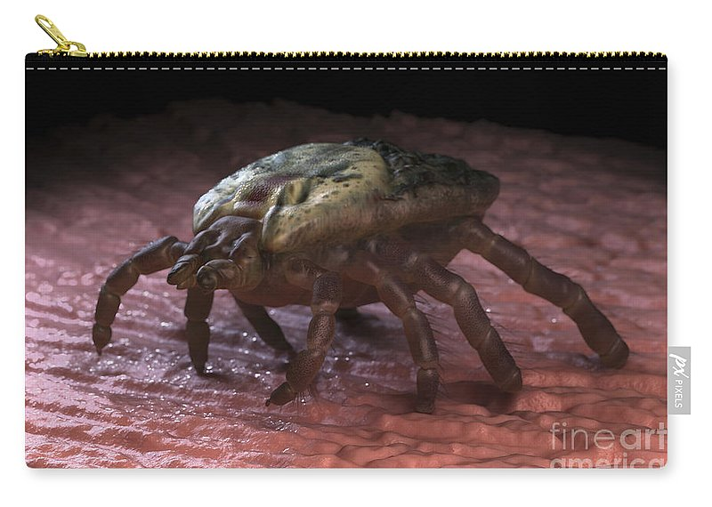 Parasites Carry-all Pouch featuring the photograph Tick Ixodes by Science Picture Co