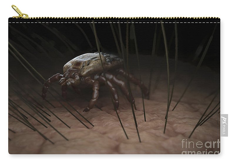 Haematophagy Carry-all Pouch featuring the photograph Tick Ixodes by Science Picture Co