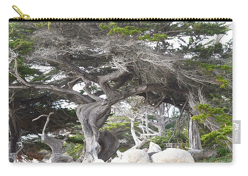 Golf Course Carry-all Pouch featuring the digital art 17 Mile Drive Tree by Barbara Snyder