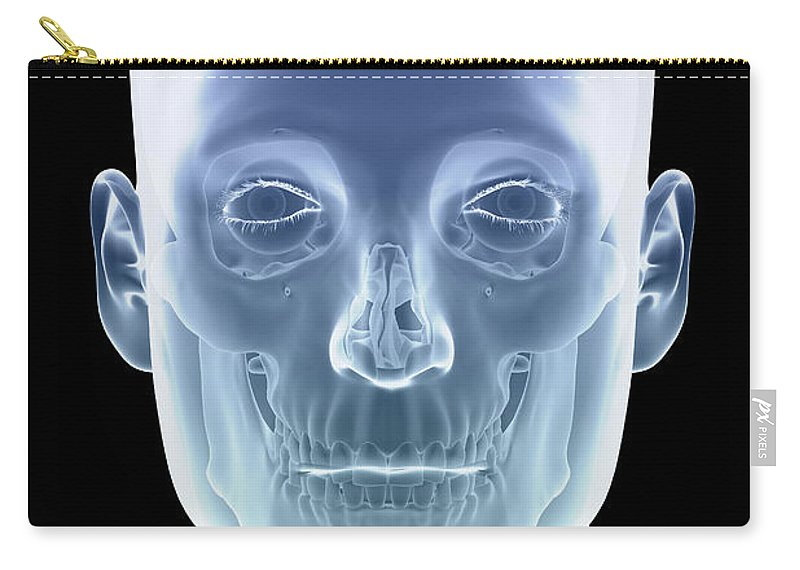 Transparent Skin Carry-all Pouch featuring the photograph The Skull by Science Picture Co