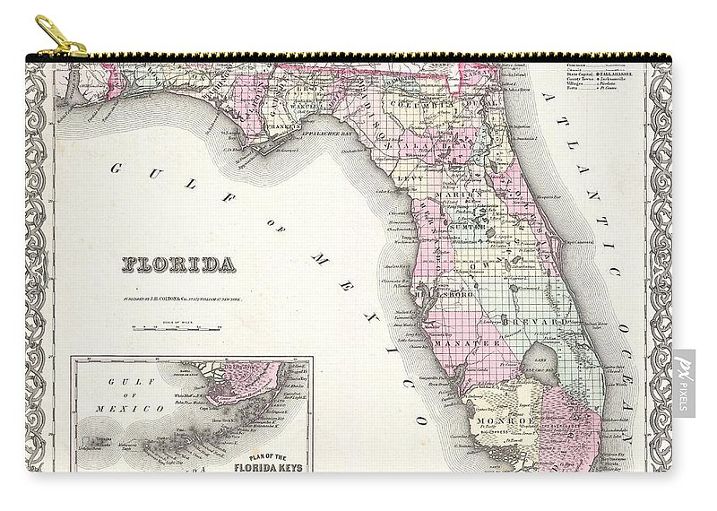 Carry-all Pouch featuring the photograph 1855 Colton Map Of Florida by Paul Fearn