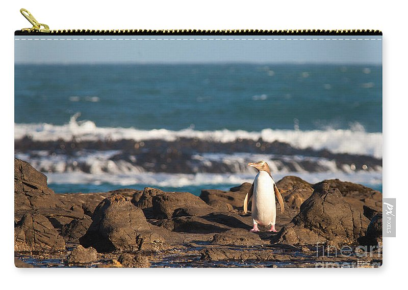 South Island Carry-all Pouch featuring the photograph Adult Nz Yellow-eyed Penguin Or Hoiho On Shore by Stephan Pietzko