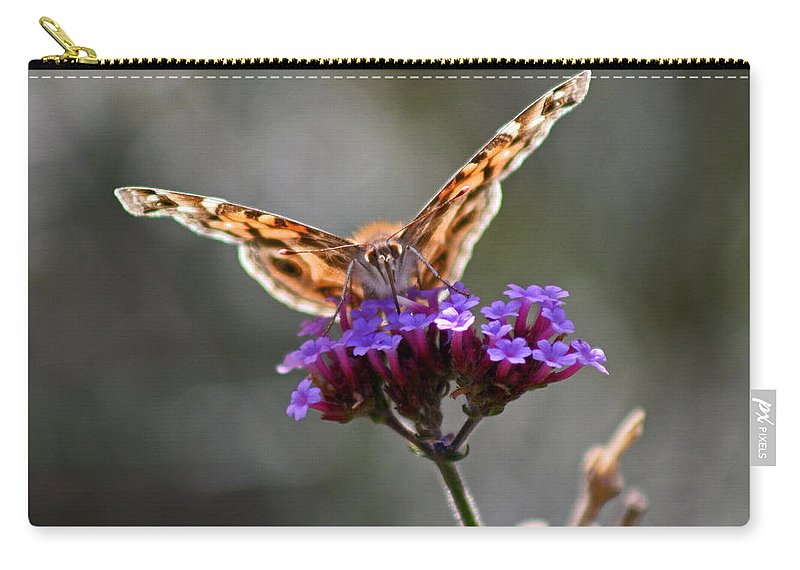 American Painted Lady Carry-all Pouch featuring the photograph American Painted Lady Butterfly by Karen Adams