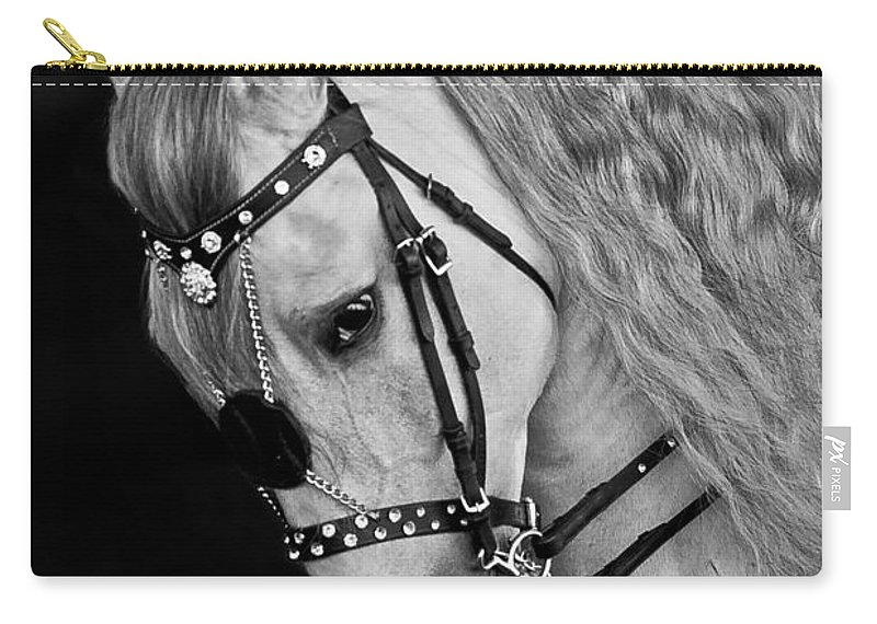 Andalusian Carry-all Pouch featuring the photograph Andalusian by Wes and Dotty Weber