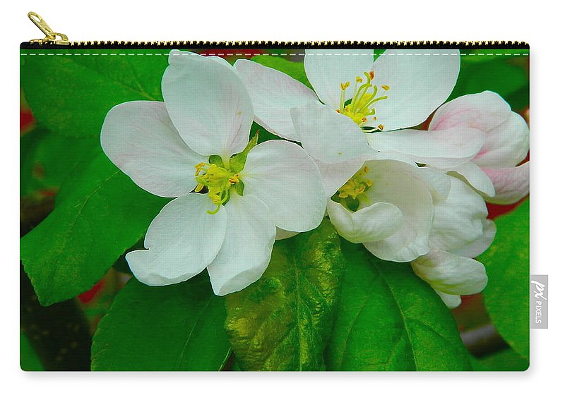 Art Carry-all Pouch featuring the photograph Apple Blossoms by Johanna Bruwer