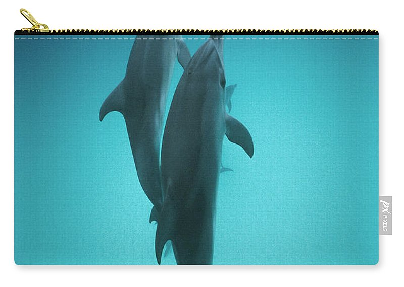 Feb0514 Carry-all Pouch featuring the photograph Atlantic Spotted Dolphin Pair Bahamas by Flip Nicklin