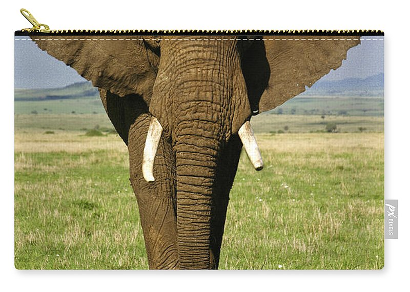 Africa Carry-all Pouch featuring the photograph Big Boy by Michele Burgess