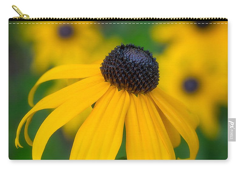 Blackeyed Susan Carry-all Pouch featuring the photograph Blackeyed Susan by David Kay