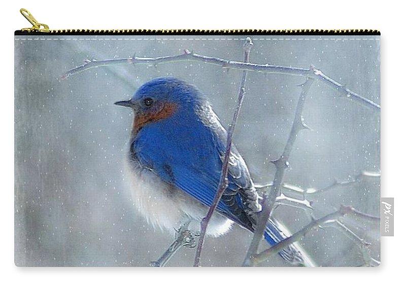 Birds Carry-all Pouch featuring the photograph Blue Bird by Fran J Scott