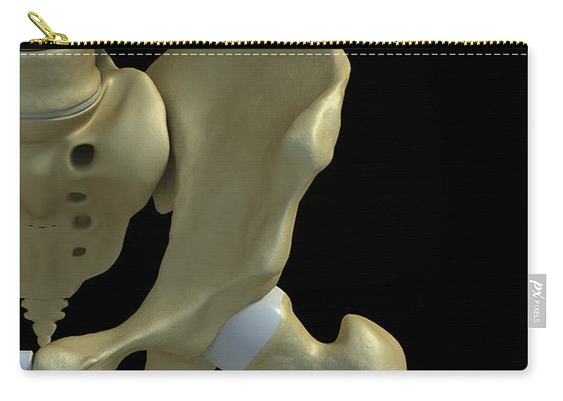 3d Visualisation Carry-all Pouch featuring the photograph Bones Of The Hip by Science Picture Co