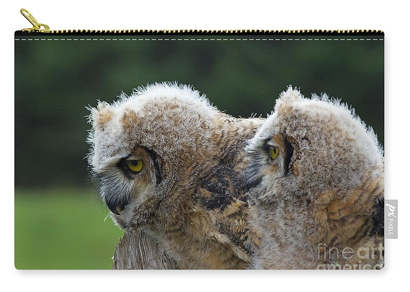 Great Carry-all Pouch featuring the photograph Brother And Sister by Les Palenik