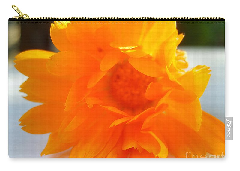 Calendula Officinalis Carry-all Pouch featuring the photograph Calendula by Nina Ficur Feenan
