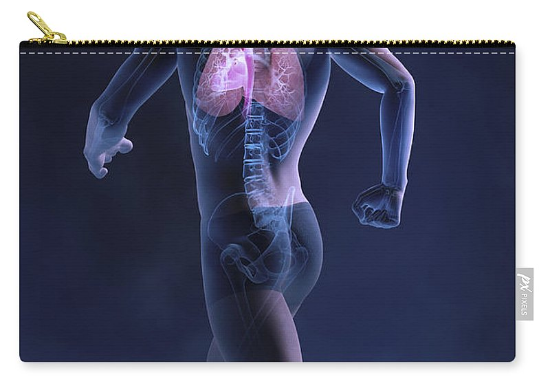 Male Carry-all Pouch featuring the photograph Cardiovascular Exercise by Science Picture Co