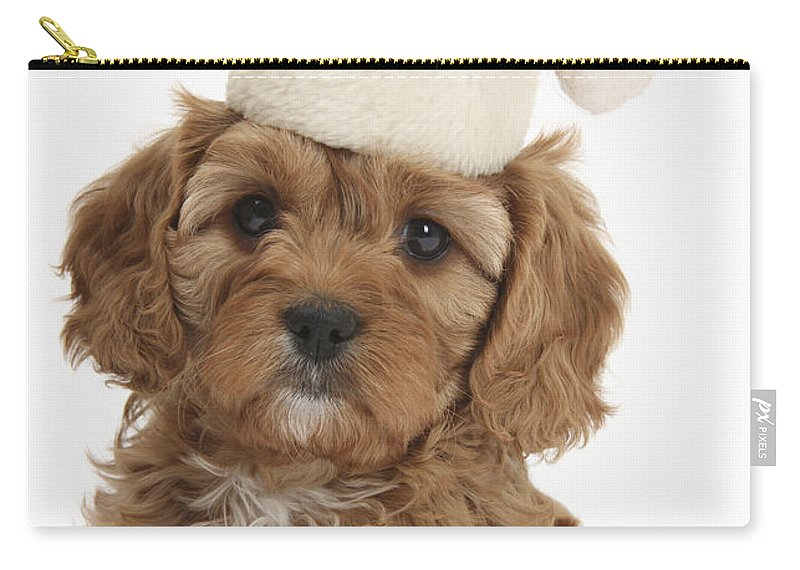 Cavapoo Puppy In Christmas Hat Carry-all Pouch