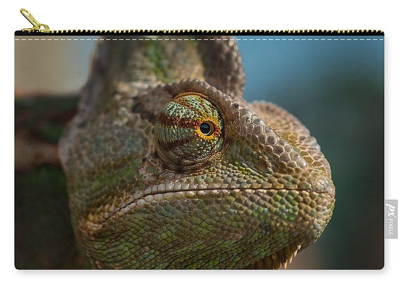 Animal Carry-all Pouch featuring the photograph Chameleon by TouTouke A Y