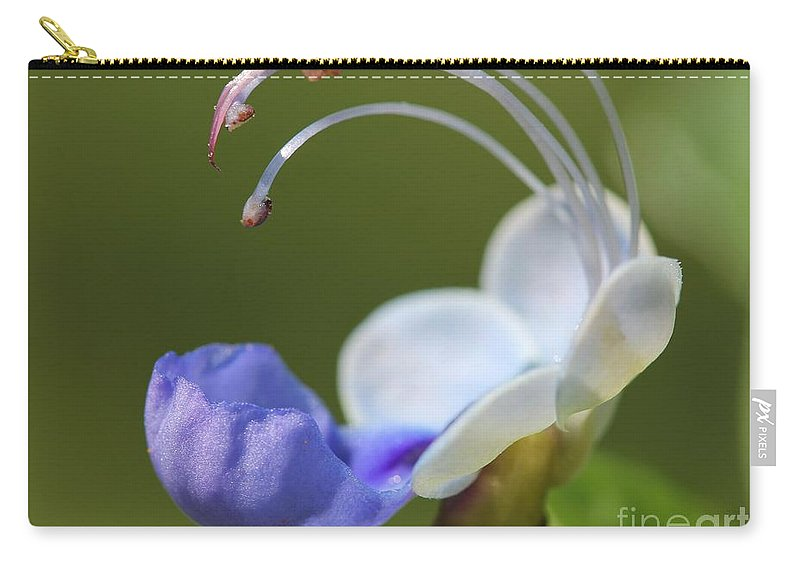 Mccombie Carry-all Pouch featuring the photograph Clerodendrum Ugandense Or Blue Butterfly Bush by J McCombie