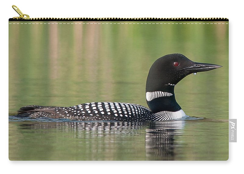 Bird Carry-all Pouch featuring the photograph Common Loon by Richard Kitchen