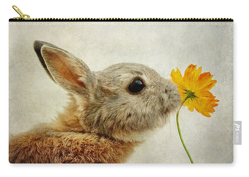 Rabbit Carry-all Pouch featuring the photograph Connection by Sonya Kanelstrand