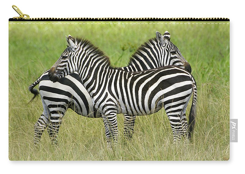 Africa Carry-all Pouch featuring the photograph Crisscross Stripes by Michele Burgess