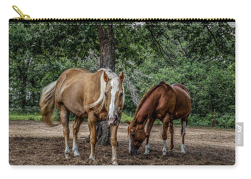 Animal Carry-all Pouch featuring the photograph Curiosity by Doug Long