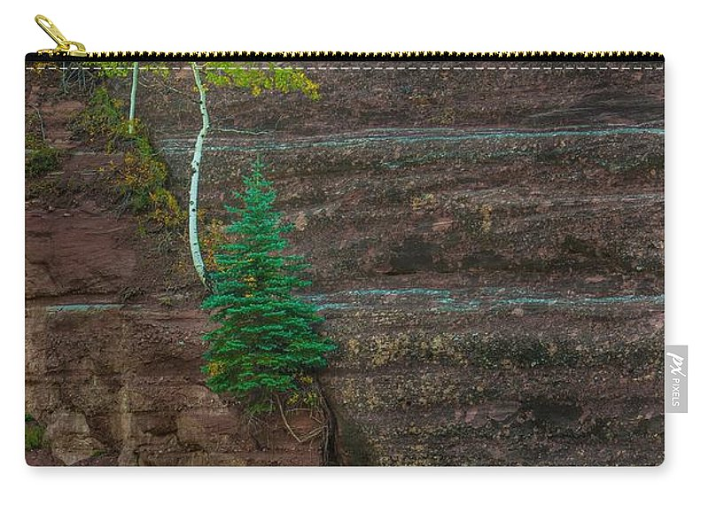 Landscape Carry-all Pouch featuring the photograph Determination by Bill Sherrell