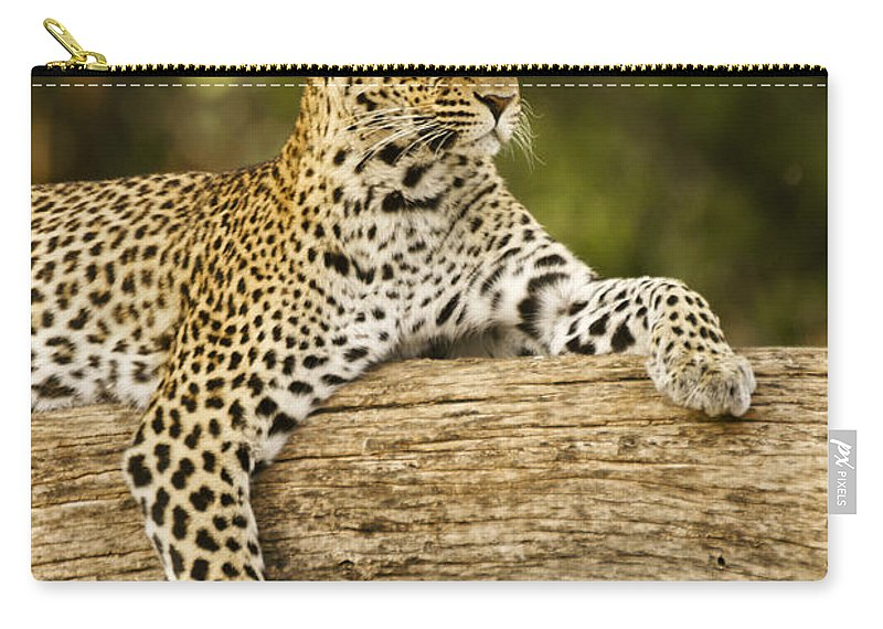 Africa Carry-all Pouch featuring the photograph Dignity by Michele Burgess