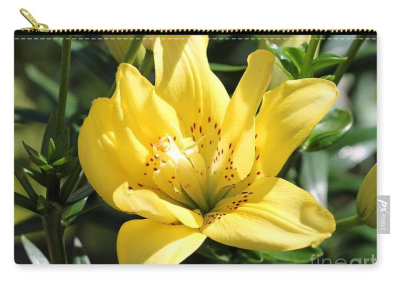 Mccombie Carry-all Pouch featuring the photograph Double Asiatic Lily Named Fata Morgana by J McCombie
