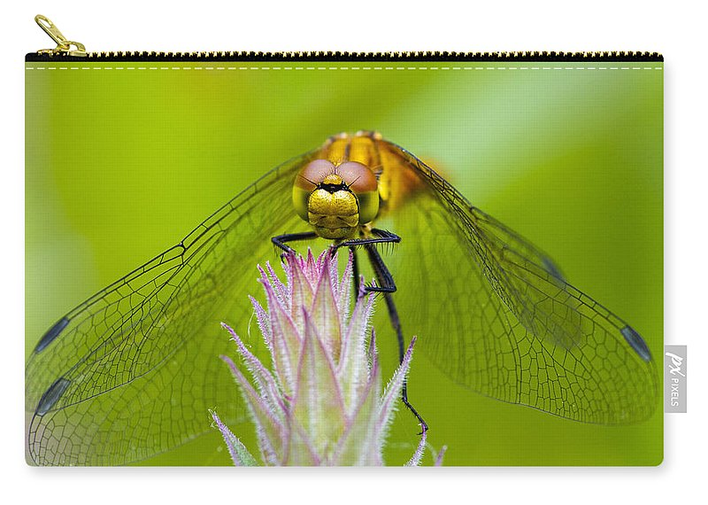 Dragonfly Carry-all Pouch featuring the photograph Dragonfly by Chris Smith