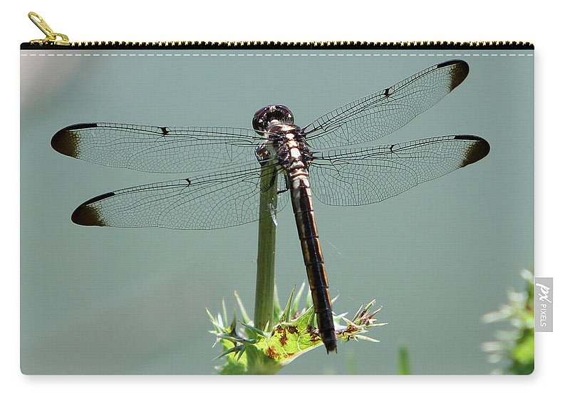 Nature Carry-all Pouch featuring the photograph Dragonfly by John Freidenberg