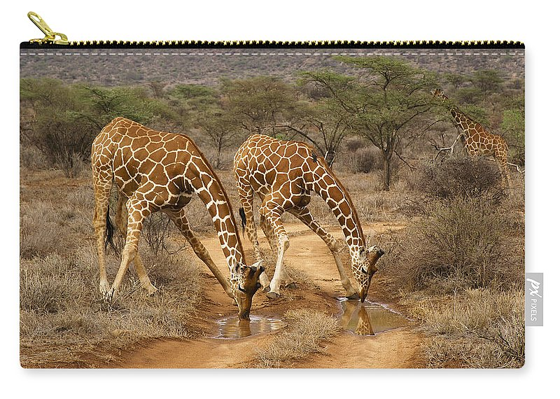 Africa Carry-all Pouch featuring the photograph Drinking In Tandem by Michele Burgess
