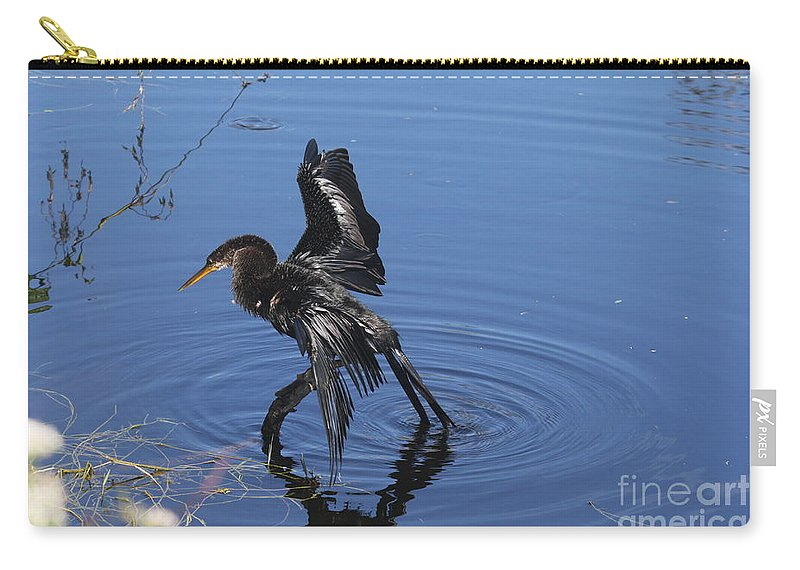 Anhinga Carry-all Pouch featuring the photograph Drying Anhinga by Christiane Schulze Art And Photography